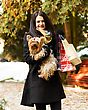 Woman On Shopping Tour For Christmas With Lovely Pet Dog stock photography