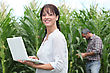 Woman Using Her Laptop In A Field Of Crops
