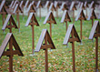 Wooden Crosses at Memorial Grave Site stock photo