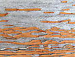 Wooden Texture With Cracked And Peeling Brown Paint