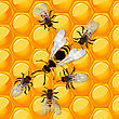 Working Bees Defending A Honeycomb From A Wasp. Trasparency Effect.