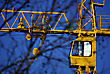 Yellow Construction Tower Crane Against Clear Blue Sky And Blured Leafless Branches stock photo