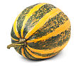 Yellow Pumpkin stock photography